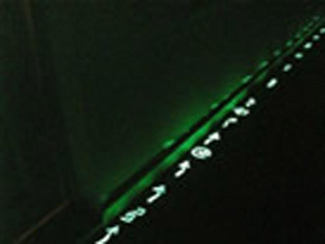 Флуоресцентная краска для систем безопасности и знаков эвакуации. Купить ультрафиолетовую краску Noxton for Evacuation Signs Ult